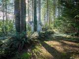 5690 Lewis River Rd - Photo 21