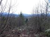 302 Tolt Hill Road - Photo 1