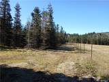 0 Middle Satsop Rd - Photo 4