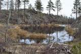 223 Cameron Lake Loop Road - Photo 8