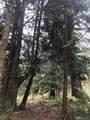 4111 Delphi Rd - Photo 9