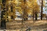 46 Beaver Pond Rd - Photo 3