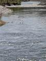 46 Beaver Pond Rd - Photo 30