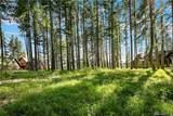 1110 Pinegrass Lp - Photo 3
