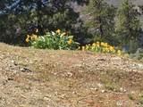 153 Gold Rush Ridge Rd - Photo 8