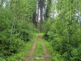 0 Mule Tail Flats Road - Photo 11