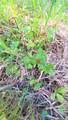9999 Fox Hollow Rd - Photo 14