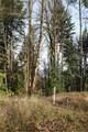 17845 Cougar Mountain Drive - Photo 6
