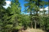375 Wolf Creek Road - Photo 24