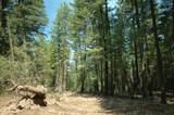 375 Wolf Creek Road - Photo 30