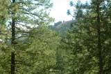375 Wolf Creek Road - Photo 37