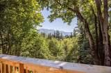 15602 Goldbar Drive - Photo 17