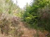 4 Buena Vista Way - Photo 7