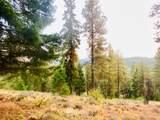 1570 Pinegrass Loop - Photo 3