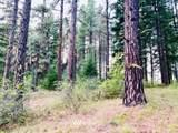 1570 Pinegrass Loop - Photo 8