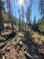 13 Morgan Creek Road - Photo 3