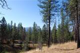 1 Long Horn Trail - Photo 1