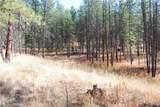 1 Long Horn Trail - Photo 11