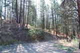 1 Long Horn Trail - Photo 12