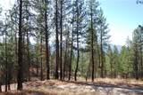 1 Long Horn Trail - Photo 13