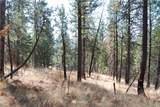 1 Long Horn Trail - Photo 15
