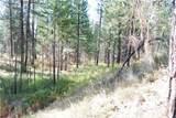 1 Long Horn Trail - Photo 16