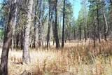 1 Long Horn Trail - Photo 17