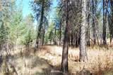 1 Long Horn Trail - Photo 18