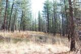 1 Long Horn Trail - Photo 3
