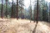 1 Long Horn Trail - Photo 4