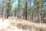 1 Long Horn Trail - Photo 5