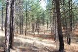 1 Long Horn Trail - Photo 6