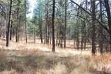 1 Long Horn Trail - Photo 7