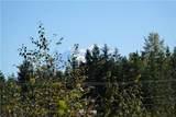 15611 Timber Ridge Lane - Photo 11