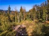 0 Squalicum Mountain Road - Photo 3