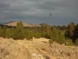 111 Cougar Canyon Road - Photo 14