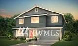 9228 Fairybell Street - Photo 1