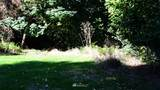 4510 Waterview Street - Photo 6