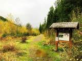 7486 Glacier Springs Drive - Photo 13