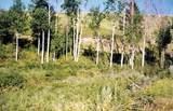 376 B Mary Ann Creek Road - Photo 7