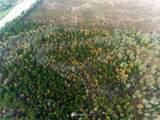 0 Pine Tree Road - Photo 3
