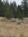 0 Patterson Creek Road - Photo 7