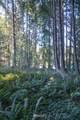 0 Lake Ketchum Road - Photo 6