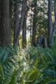 0 Lake Ketchum Road - Photo 8