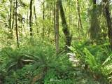 50011 Midway Creek Road - Photo 11