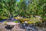 26318 Old Black Nugget Road - Photo 40