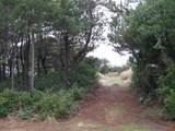 207 Sand Dune Avenue - Photo 1