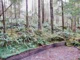 118 Jasper Trail - Photo 16