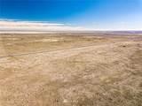 161791000 Highway 17 - Photo 10