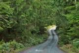 3439 Green Hemlock Lane - Photo 5